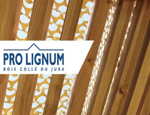 Découvrez notre partenaire Pro Lignum